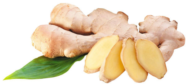 Ginger: Amazing Root that Sooth All Your System